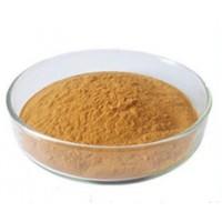 批发供应食品级茶多酚 抗氧化剂