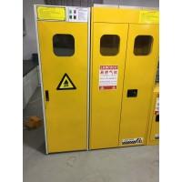 气瓶柜报警装置-全钢双气瓶柜防爆气瓶柜-北京信凯