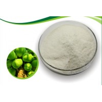 宏兴食品级木瓜蛋白酶质量标准