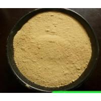 宏兴食品级中性蛋白酶国标