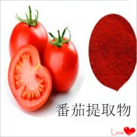 番茄膳食纤维 番茄纤维粉 1公斤起订  宁夏凯源生物