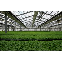 河南遮阳网的经济效益_温室大棚配件的作用