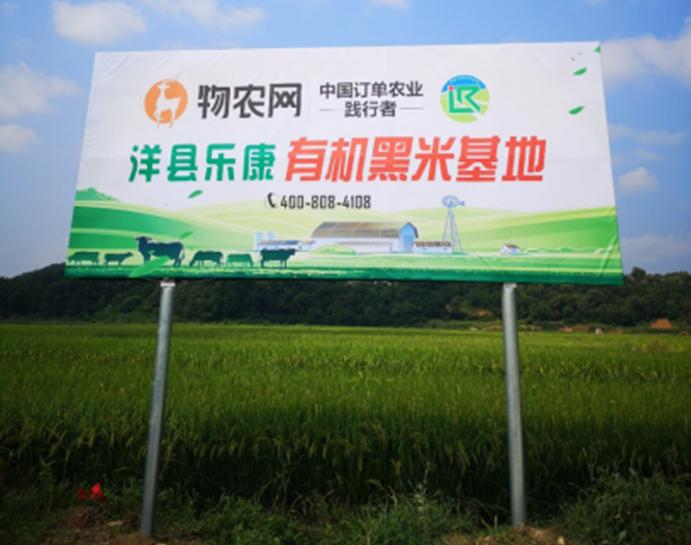 订单农业改变世界,物农网成立五大基地