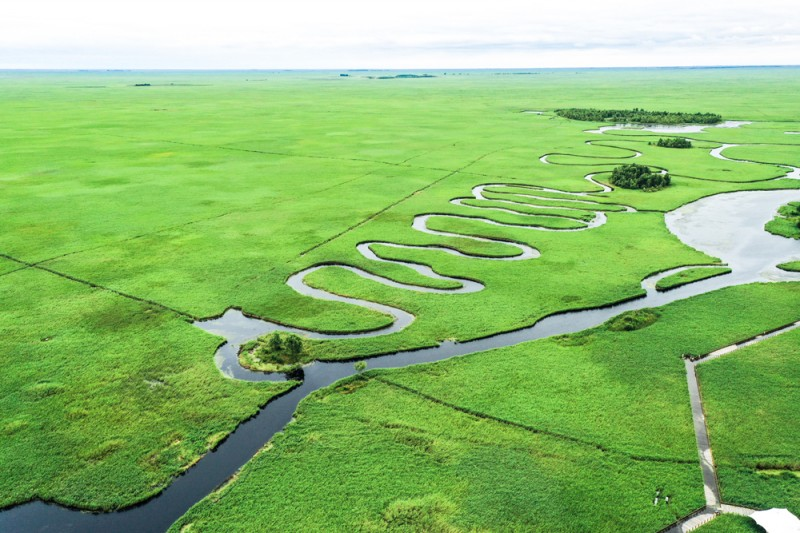 图1扎龙湿地