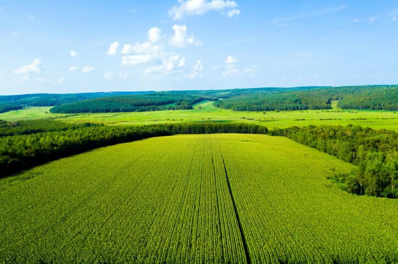 图3黑土农田